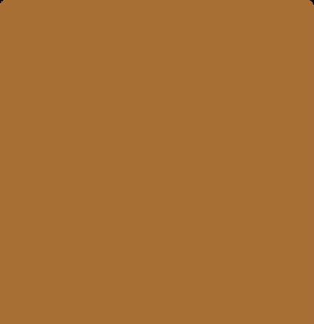 realsense color-Cognac